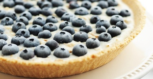 Frozen Blueberry Coconut Pie